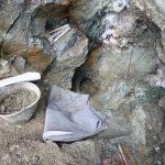 So fanden wir das Quarzband im Frühjahr.