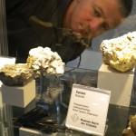 2011 Mineralientage München